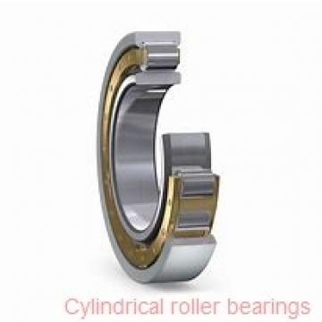 80 mm x 170 mm x 39 mm  SKF NUP 316 ECP  Cylindrical Roller Bearings