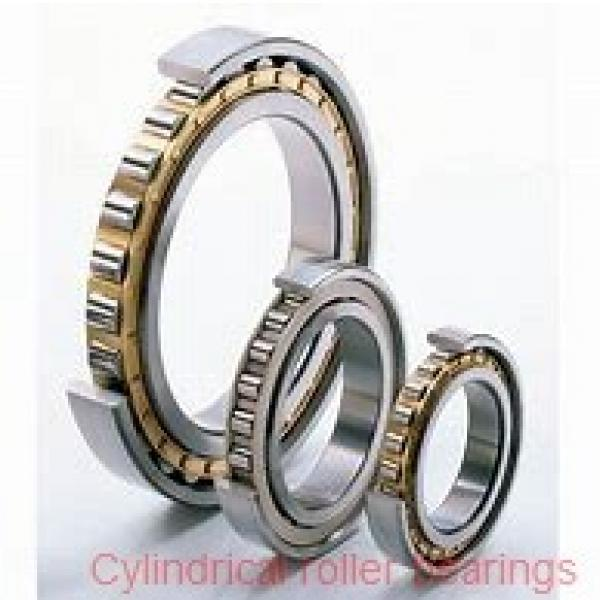 30 mm x 90 mm x 23 mm  SKF NJ 406  Cylindrical Roller Bearings #2 image