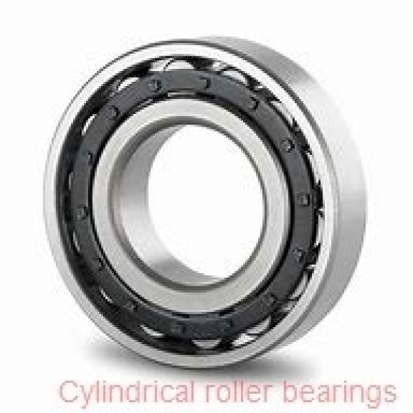 17 mm x 40 mm x 12 mm  SKF N 203 ECP  Cylindrical Roller Bearings #1 image